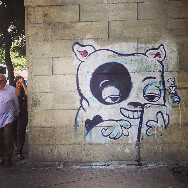 """O dono da loja acha que a parede é dele, mas a parede é da rua. Se essa rua for em #Copacabana, você já sabe o fim da história... """"Selfie Caninus"""" (o melhor amigo do #selfie) by #PXE #graffiti #streetart #RiodeJaneiro #Brasil #dog #doodle #streetartRio"""