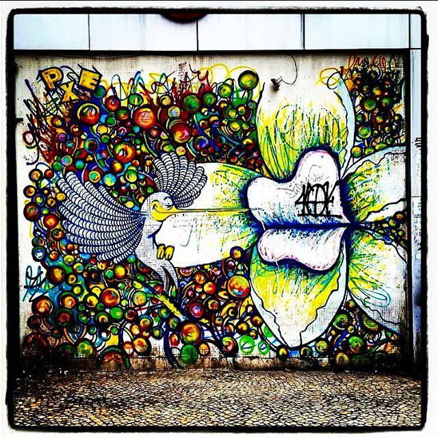 Awesome street art #rio #streetartrio #streetart #streetartistry #streetartagram #arteurbano #arte #artedarua #urbanart #art #rj #rio #riodejaneiro #bird #birdsofinstagram #streetarteverywhere #streetartphotography #brasil #brazil #cor #color #colour #colorful