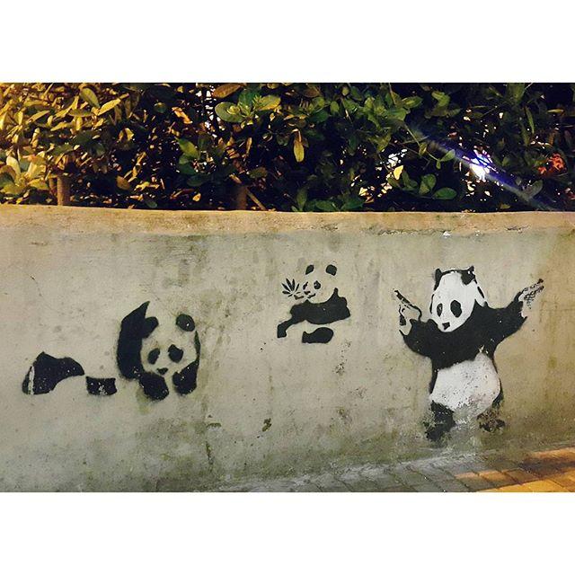 Pandas everywhere #streetartrio #streetart #vsco