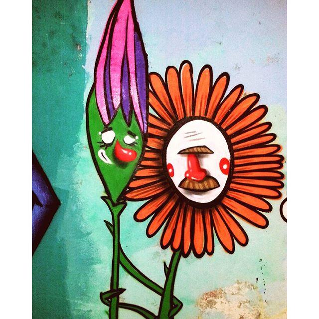 Família Flores #euvejofloresemvoce #Flores #florespalhaças #narigoodis #flowers #streetartrio #grafitti #grafite #carva #CarvaEstúdio