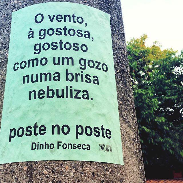 #poesias #poetry #poema #poemas #verso #versos #poeta #poetas #arte #arteurbana #rj #rio #streetart #original #autor #autoral #post #poste #postes #posts #frases #dinho #dinhofonseca #postenoposte #poster #originals #StreetArtRio #street #verdadenoturna #editorial