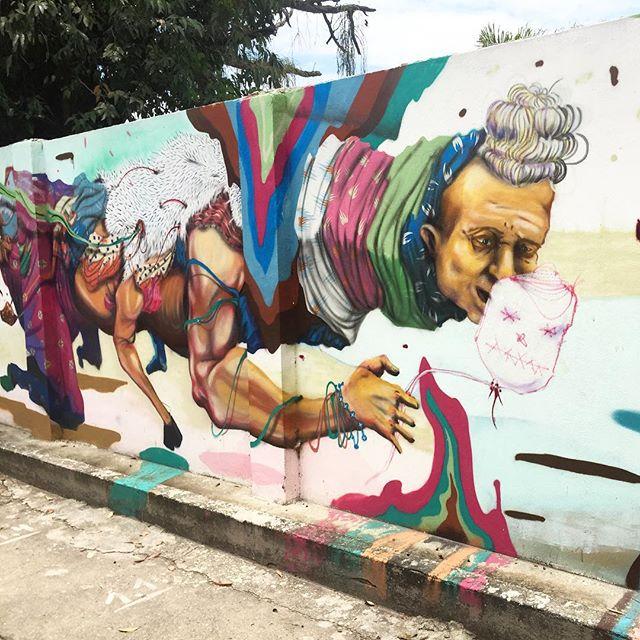@acidumproject #grafite #graffrio #graffiti #projetosaúde #caminhada #jockeyclub #lagoarodrigodefreitas #riodejaneiro #murosdorio #streetartrio