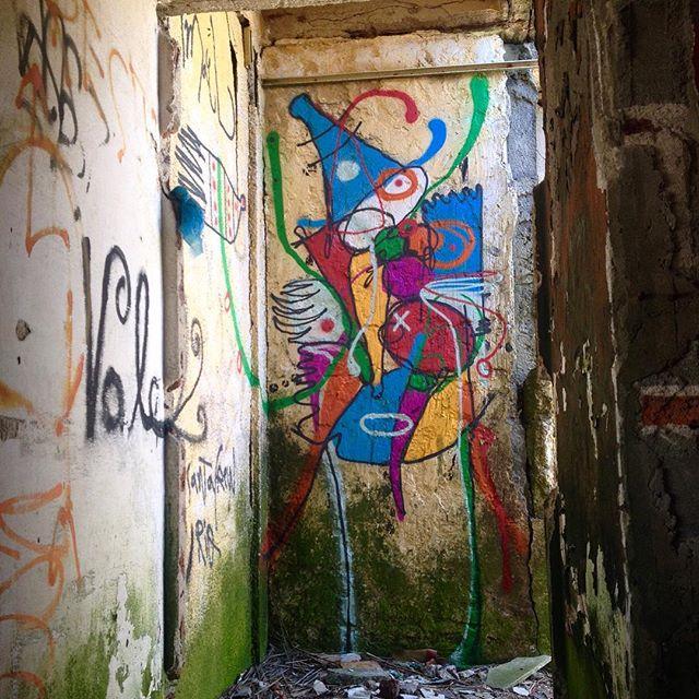 A pequena surpresa no final do corredor da casinha desarrumada... #puntadediablo
