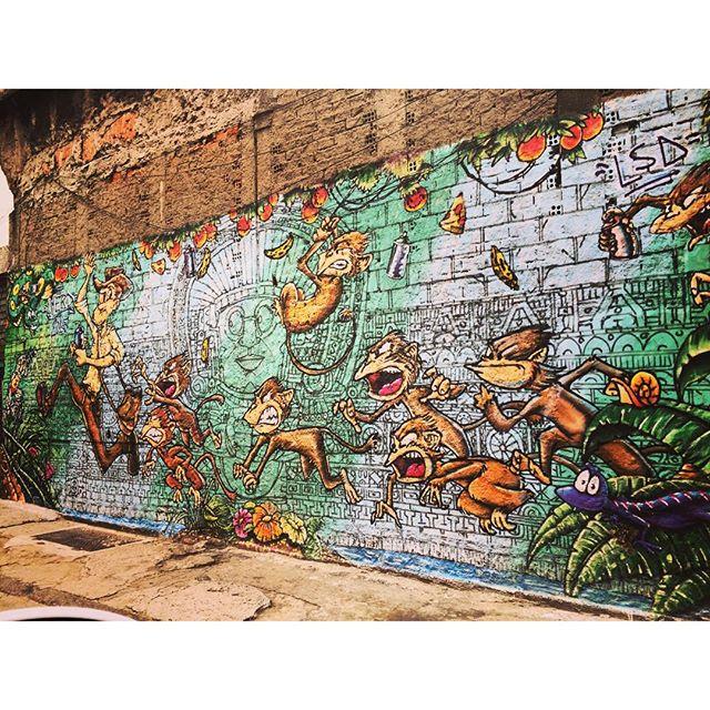 Lindo muro de miquinhos! #murosdorio #graffiti #grafite #streetartrio #arteurbanabr #artelivre