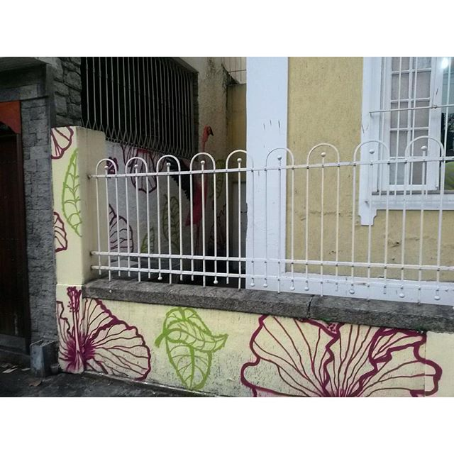 Visual completo em que da pra ver quase tudo. #rafa #flamingo #casaamarela #flores #flowe #flowers #flowerpower #graff #grafffiti #graffitiart #instagraffiti #instagraffite #streetartrj #streetartrio #trapacrew #decoração #interiordesign #grafite #mtn #mtn94 #colorgin #colorginarteurbana