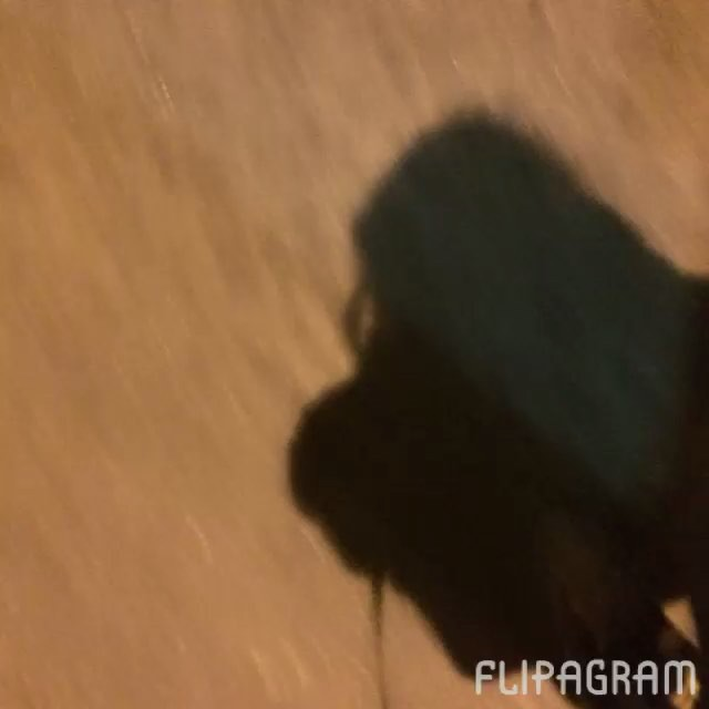 #oraculoproject #bleedingtree #arvoresangrando #manifesto #arteurbana #urbanart #poetry #urbanpoetry #streetart #graffiti #urban #intervention #intervencao #escultura #sculpture #deadtree #sadtree #oraculotrees #bleedingtree #choppedtree #streetartrio #streetartbrasil #love #nature #natureza #respect #mothernature #streetartrio #streetartbrasil #riodejaneiro #ipanema seguido de #lagoa : rua maria quiteria a primeira e a 2a av epitacio pessoa. Proximo ao reme do botafogo................….......................... Roteiro : Oraculoproject Direcao : Oraculoproject Edicao : Oraculoproject Fotografia : Oraculoproject Trilha sonora : Oraculoproject Figurino : Oraculoproject Direcao de arte : Oraculoproject Efeitos especiais : Oraculoproject Equip. Coordenaçao : Oraculoproject Ator : Oraculoproject Duble : Oraculoproject Camera-man : Oraculoproject Equip. Transporte : Oraculoproject Texto : Oraculoproject Divulgaçao : Oraculoproject Apoio : Oraculoproject