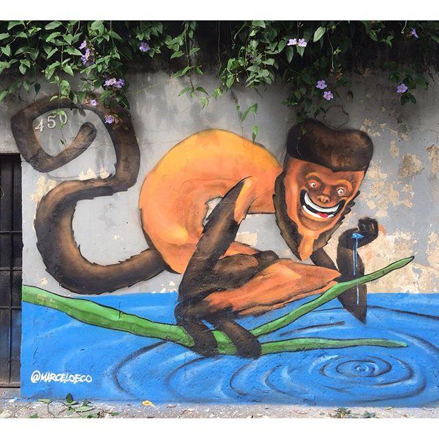 Macaco prego o mais danado. Feito ontem na nascente do Rio Trapicheiros na Tijuca. Valeu Ivan, Rodrigo, Ondine, Saulo e Danny. #tuas #macacoprego #tijuca #riodejaneiro #streetartrio #marceloeco