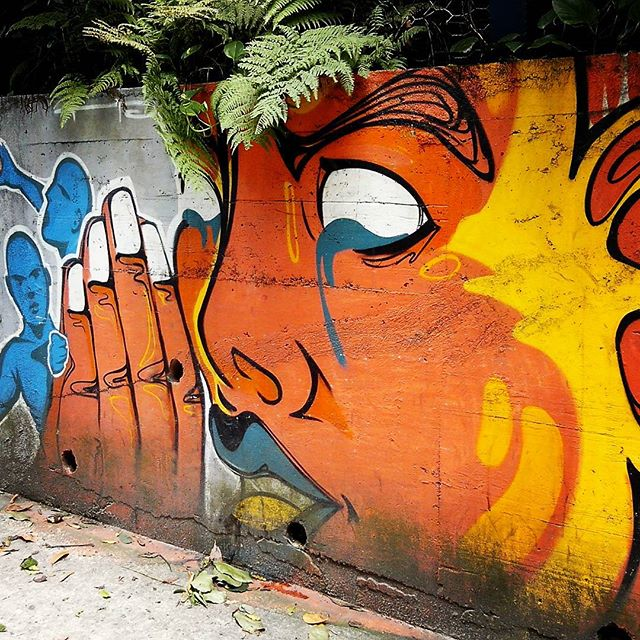 Rio de Janeiro. 06/12/2015   vandalogy #StreetArtRio #StreetArt #riodejaneiro #graffiti #gavea #spray #vandalogy2015