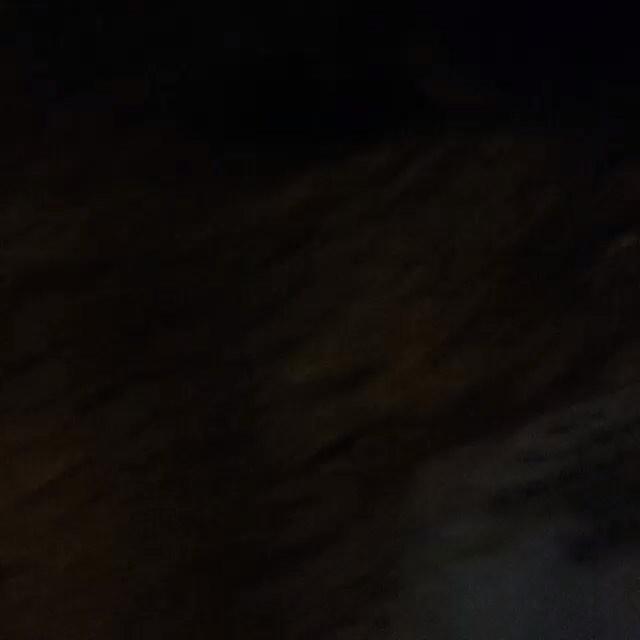 #oraculoproject #contemporaryart #bleedingtree #arvoresangrando #streetart #manifesto #urbanart #streetartphotography #stopmotion #urbanwalls #mothernature #respect #love #nature #planetearth #brasil #riodejaneiro #gavea #baixogavea #bg #sculpture #escultura #streetartnews #choppedtree #streetartrio #arvorecortada #escultura #crime #prefeituradoriodejaneiro #oraculotrees #protesto : moradora da gavea assassinada em casa... Homicidio duplamemte qualificado .( a visita a cena do crime aconteceu ontem .) . Directed by : Oraculoproject Produced by : Oraculoproject Music by : Oraculoproject Photography by : Oraculoproject Editing by: Oraculoproject Art direction by: Oraculoproject Cast (in credits order) : Oraculoproject Assistant director : Oraculoproject Special effects : Oraculoproject Visual effects : Oraculoproject Camera : Oraculoproject Stunts: Oraculoproject Transportarion dep. : Oraculoproject Crew: Oraculoproject
