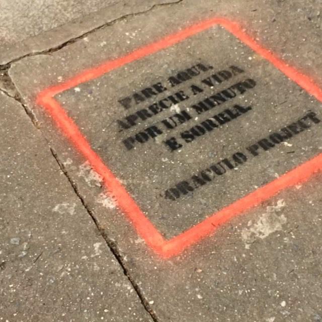 #oraculoproject #contemporaryart #streetart #manifesto #urbanart #artederua #arteurbana #stencil #stencilart #love #gratitude #gratidao magic #teleport #brasil #riodejaneiro #tijuca #streetartnews #streetartrio #vida #appreciatelife #enjoylife : newton leva o logan p passear na pracinha !