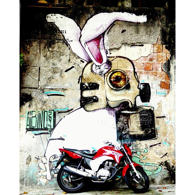 Bunny art in the streets of #riodejaneiro #streetart #urbanart #streetlife #santateresa #brazilart #StreetArtRio #citystyle #travelstoke #traveladdict #travelblogger #travelstories #traveltheworld #worldtrip #riolifestyle #favelas #chasingtheworld #yourtravellist