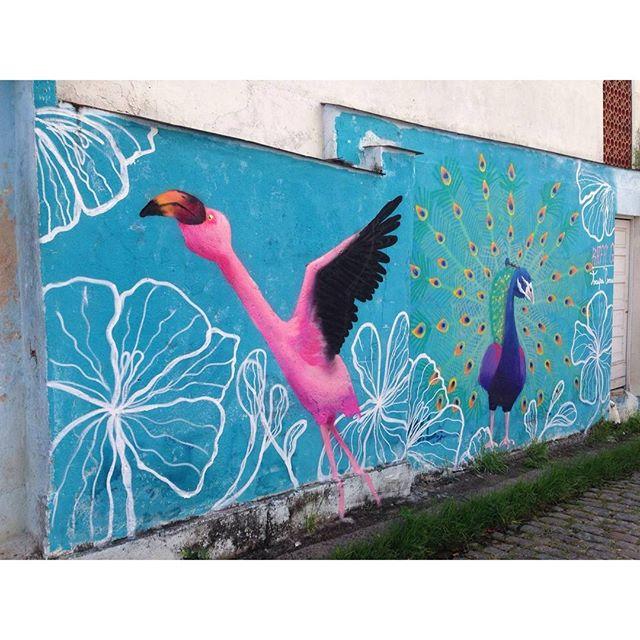 Completo. VISITE A #ladeiradocastro #flamingo #flamingos #pinkflamingo #flamenco #graffiti #grafite #graff #trapacrew #streetart #streetartrj #streetartrio