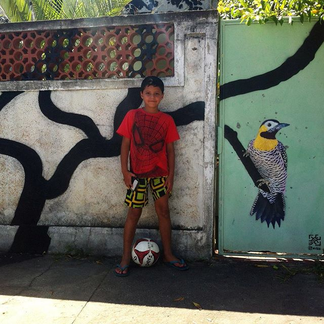 RJ 01/2016 Santa Cruz, Rio de Janeiro 2016 #i_support_street_art #streetart_official #isupportstreetart #streetartbrasil #stencil #estêncil #streetartrio #streetart #instagrafite #mtnrio #mtnbrasil #mtnword #montanacolors #streetartofficial #streetartphotography #graffitiart #art #streetart #instagraffiti #streetartist #graffiti #stencil #urbanart #streetarteverywhere #streetartblvd