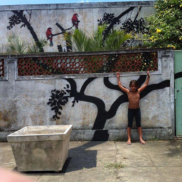 Rio de Janeiro 2016 Santa Cruz, Rio de Janeiro 2016 #i_support_street_art #streetart_official #isupportstreetart #streetartbrasil #stencil #estêncil #streetartrio #streetart #instagrafite #mtnrio #mtnbrasil #mtnword #montanacolors #streetartofficial #streetartphotography #graffitiart #art #streetart #instagraffiti #streetartist #graffiti #stencil #urbanart #streetarteverywhere #streetartblvd
