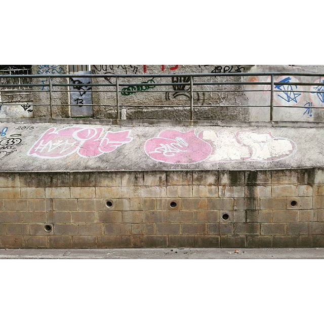 #calvinwolf #wolf #vandal #letter #graffiti #instagrafite #streetartrio #AVCrew Role com o dyc