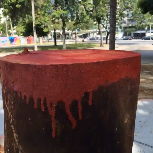 #oraculoproject #bleedingtree #arvoresangrando #streetart #manifesto #urbanart #graffiti #streetartphotography #stopmotion #loop #urbanwalls #oraculotrees #mothernature #respect #love #nature #planetearth #oraculotrees #riodejaneiro #gavea #fontedasaudade #humaita #lagoa #sculpture #escultura #streetartnews #choppedtree #streetartrio #arvorecortada #escultura #crime #riodejaneiro #assassinato : 4 assassinatos em menos 50 metros de distancia Directed by : Oraculoproject Produced by : Oraculoproject Music by : Oraculoproject Photography by : Oraculoproject Editing by: Oraculoproject Art direction by: Oraculoproject Cast (in credits order) : Oraculoproject Assistant director : Oraculoproject Special effects : Oraculoproject Visual effects : Oraculoproject Camera : Oraculoproject Stunts: Oraculoproject Transportarion dep. : Oraculoproject Crew: Oraculoproject