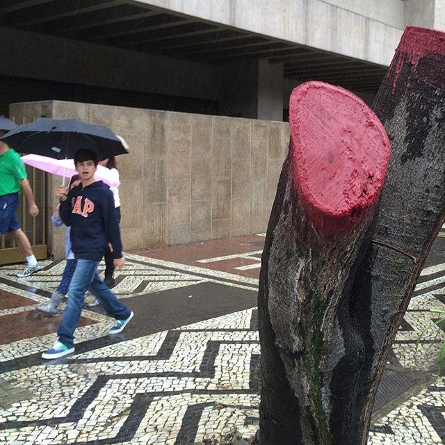 #oraculoproject #op #manifesto #artederua #arteurbana #intervencao #escultura #sculpture #intervention #love #nature #natureza #maenatureza #goodcauses #poetry #poesia #organic #streetartrio #streetartphotography #urban #street #bleedingtree #arvoresangrando #oraculotrees #riodejaneiro #brasil #rj #choppedtrees #arvorescortadas #arvorecortada : encontrei essa foto no meio das centenas de fotos que tirei para fazer o stopmotion ..... Aconteceu ontem na cena do crime na praia de botafogo....essa foto não tem nada demais , mas mostra a reação de uma crianca....ao ver a arvore sangrando. Sao imagens fortes sim , mas nao acredito q isso chegara a chocar uma crianca perante as atrocidades que ele esta exposto diariamente.
