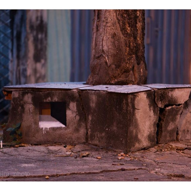 Clic: @madeira_photo #seriejanelas #janelas #artistainterventor #bands #streetarteverywhere #streetartrio #madeira_photo