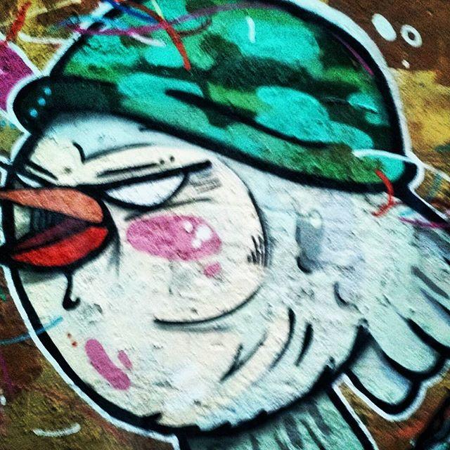 Cruzada São Sebastião, com Combo e PNG, BIVES BIRD #biveselecta #bivesburle #streetartrio #graffitirio #graffiti #galeriaceuaberto #streetart #follow