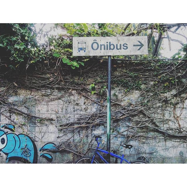 Art, information and nature fighting for more space in the city. #riodejaneiro #streetartrio #streetsign . .. #urbanism #streetart #tree #wallart #urbanart #ig_street #brstreet #brurbanlandscapes #icu_brazil #achadosdasemana #igersrio #urbano #cityscape #rioetc #urban #wall #city #igersoftheday #photooftheday #vscocam