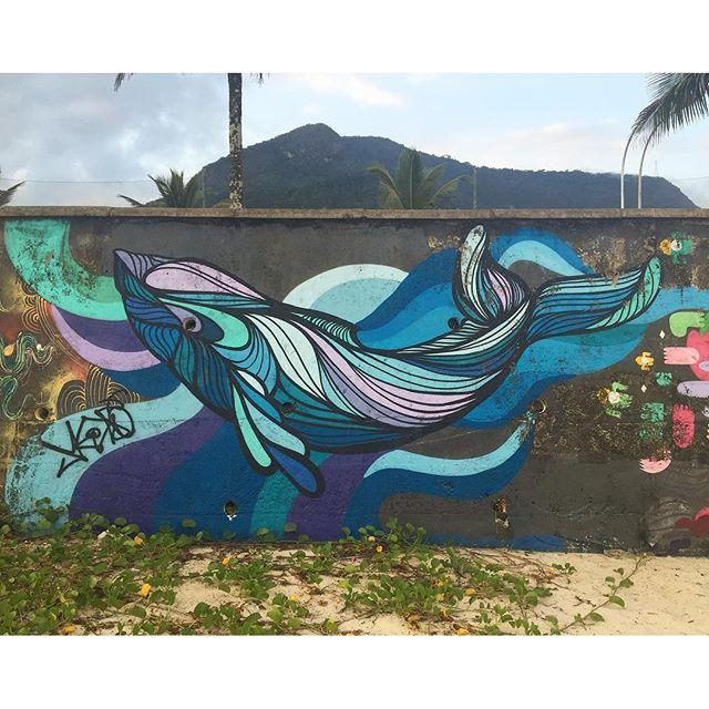 Beached Whales in Rio   #TAGTHEARTIST with @daniellebknyc #spotted #spraycation2016 #streetartRio #streetartbrazil #mural #whales #beachedwhale # #streetartriodejaneiro #praiadesaoconrado #iminheaven #publicart #appreciation #travelforart #realnewyorkerinBrazil #beachlife #beachart #palmtreelife #dowhatyoulove
