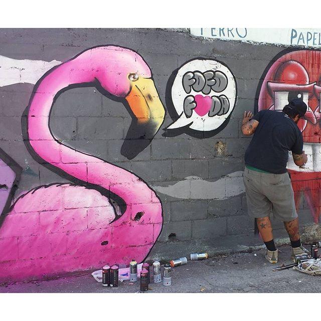 Fofo foda! Com a Trapa TODA, no Estácio. #trapacrew #flamingo #flamingos #pinkflamingo #flamenco #graffiti #grafite #graff #streetartrj #streetartrio #streetart #rafagraffiti #rafaelgeraldo #rafa #graffitiart #flaminguices