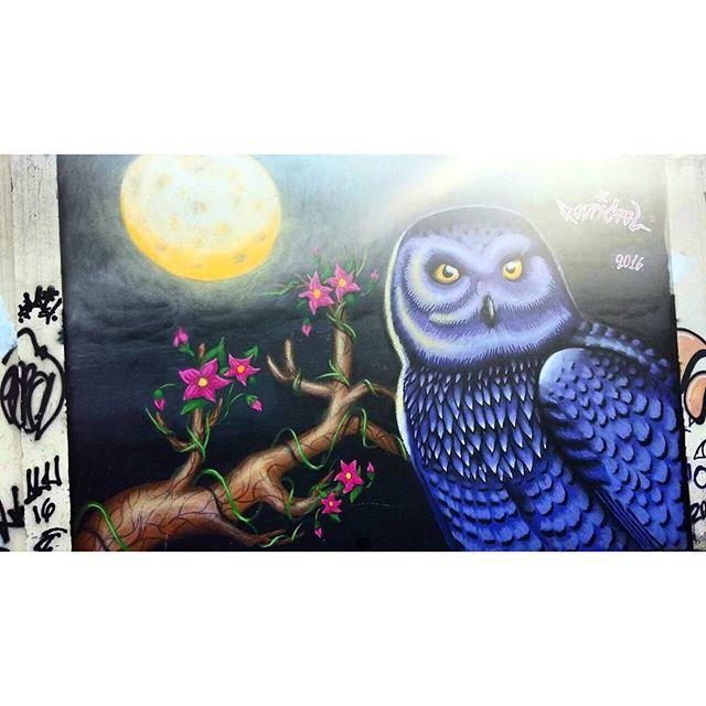RUA FELIPE CAMARÃO COM RUA SANTA LUZIA ARTIST: RODRICOOL #graffiti #graffitiart #graffitiwall #streetculture #streetphotography #streetstyle #urbanart #spraypaint #graffitirio #StreetArtRio #muros #artederua #streetart #arteurbana #welovestreetart #mural #streetartfiles #graffart #graffittigers #spraypaint #graff #wallart #olheosmuros #streetarteverywhere #streetartistry #stickerart #urbanwalls #instagraffiti #spraycanart #graffitiporn