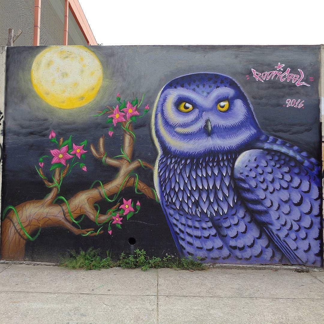 Graffiti art by @rodricool_ . #rodricool #streetartrio #graffitiart