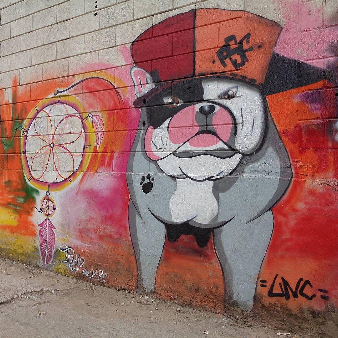 "Graffiti art by @gabilucian and @adalbertoasf for ""ARTividade Total"". #dogjam #uniaonacionalcrew #021crew #streetartrio #graffitiart #streetart #artederua #urbanart #arteurbana"