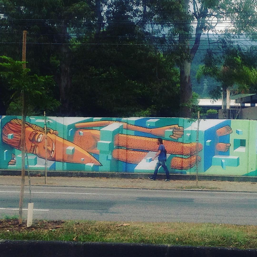 #marceloeco #riodejaneiro #streetartrio #graffiti #brasil #streetart