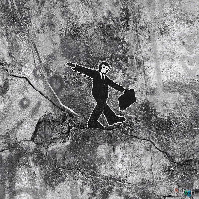 Monkey City. By StDsgn.  Rio de Janeiro . May 2016 . Street Art Rio WebSite : stdsgn.fr Galerie Studio 411  #StDsgn #streetdesign #streetart #Placement #vandal #collage #pasteup #stdsgn #urban #graffiti #EphemeralArt #slackline #slack #slackliner #monkey #streetartporn #montpellier #streetartnyc #streetartlondon #streetartparis #rio #riodejaneiro #streetartriodejaneiro #streetartrio #artderua #artderuario #brasil