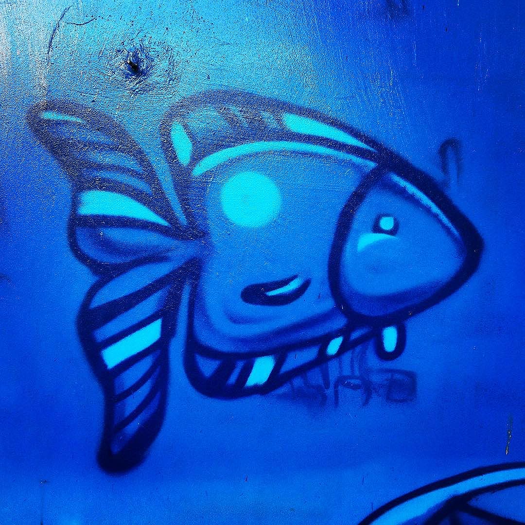 """Peixinho 1"" Memória Urbana #citymemories #streetart #streetartrio #streetartriodejaneiro #marceloeco"