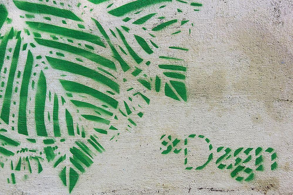 O Índio. by StDsgn Street Art Bahia 2016 WebSite : stdsgn.fr  #StDsgn #spray #brasil #graffiti #graffitiart #bahia #StreetDesign #streetartist #mural #muralista #streetartrio #london #paris #salvador #streetartmontpellier #montpellier #streetart #design #stencil #streetartsaopaulo #saopaulo #streetartlondon #streetartparis #streetarteverywhere