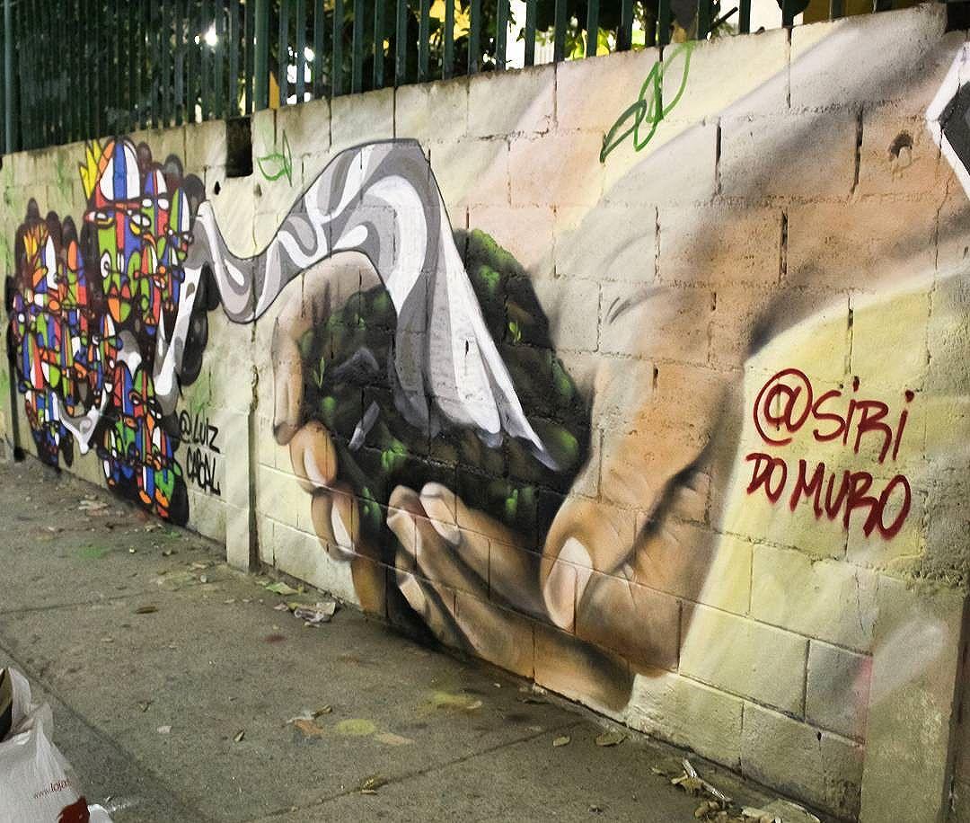 Preserve a natureza! @luizcabal #siridomuro #realism #graffitiart #streetartrio #streetart #coresevalores #graffiti