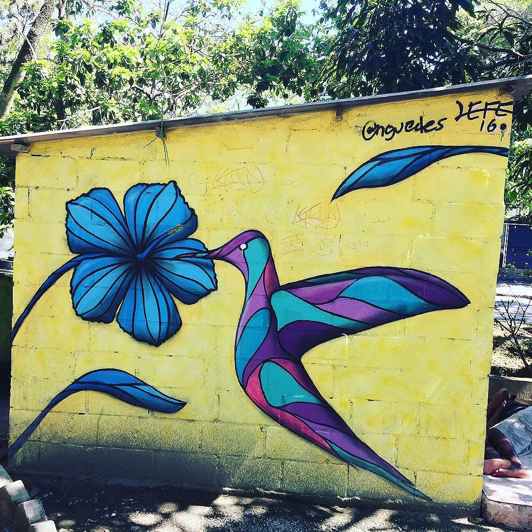 PUC- Gavea @riourbanarts #riourbanarts #streetartexperience #riograffiti #graffiti #artinrio #walkingtourinrio #streetartrio #streeartists #riourbanartstour