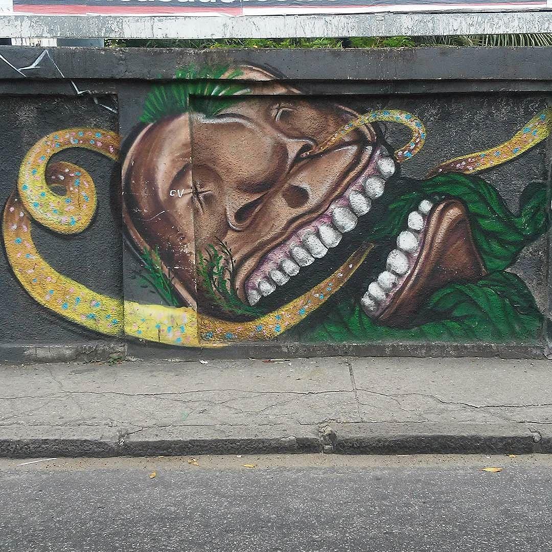 #streetart #streetartrio #streetartrj #urbanart #wallart #urbanwalls #arturbain #artderue #arteurbana #artederua #artenarua #artecallejero #graffiti #graffitiart #graffitiporn #instagraffiti #grafite #grafiterj #instagrafite #grajau #grajaurj #instagrajau