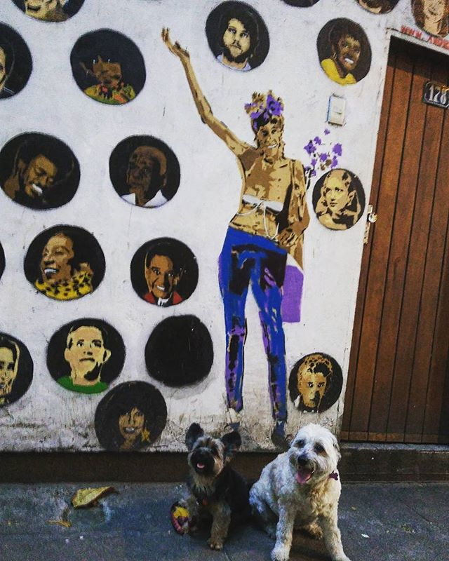 A mulher de branco de Ipanema. . . . #ipanema #riodejaneiro #021 #brazil #brasil #instapet #art #graffiti #graffit #graffitart #streetartrio #artderua #graffitiartist #mutt #muttsofinstagram #instamutt #instadog #lovemutt #lovedog #doglover #dog #srd #yorkiegram #yorkillonsofinstagram #yorkillon #yorkieshire #petbr