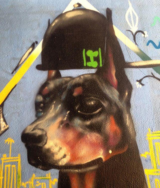 #streetart #streetartrio #copacabana #dog