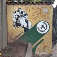 Compartilhado por: @grafiterio em Feb 14, 2017 @ 11:01