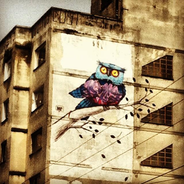 #binho3m #grafite #graff #streetartsp