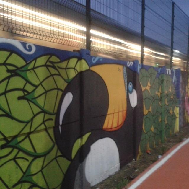 #projeto4km #graffiti #streetartsp #brazil #natureza #brasil #nature #saopaulo