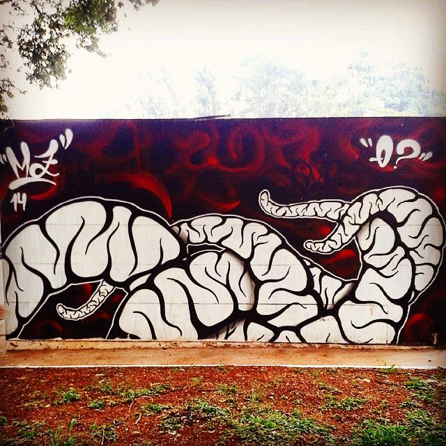 #SP #SPBrazil #SPlovers #SPcolors #pelasruasqueandei #streetart #graffiti #graffitiart #artisticintervention #urbanart #urban #walkinginthestreet #streetlife #art #artederua #arteurbana #murosurbanos #urbanwalls #StreetArtSp #olheosmuros #instagraffiti #ingf