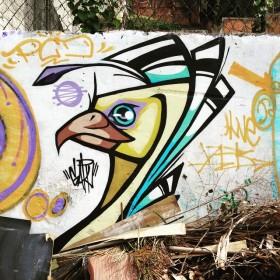 Compartilhado por: @samba.do.graffiti em May 04, 2015 @ 09:20