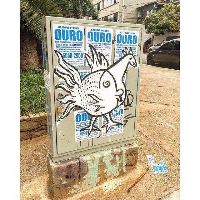 Peixe-galo  art ??? #bixiga #arteurbana #coolsampa #grafite #graffiti #graffitisaopaulo #graffitisp #instagraffiti #instasaopaulo #sampa #saopaulo #saopaulocity #sp #splovers #streetart #streetartsaopaulo #streetartsp #streetartbrasil #urbanart #sigagraffitisp #stencil #stickerart #lambelambe22/20/15.