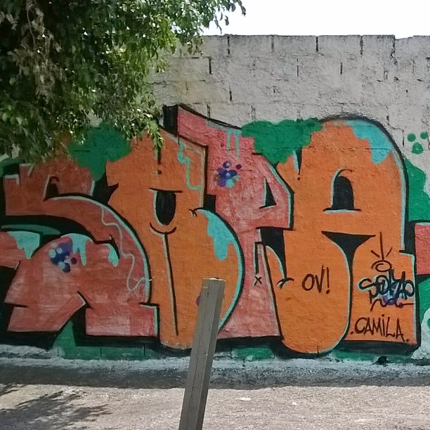 #sampagraffiti #artederua #ig_graffiti #rsa_graffiti #streetartsp #streetcandy #dsb_graff #graffitisp #streetshots #urbanart #graffitiporn #graff #graffiti #tv_streetart_ #ingf #grafflife #muralismo #streetart_illuminati #vimural #hellagraffiti #nexus_streetart #urban_graffiti #sprayed #instagraffiti #graffitibrasil #graffporn #spraydaily #streetartphotography #brasil