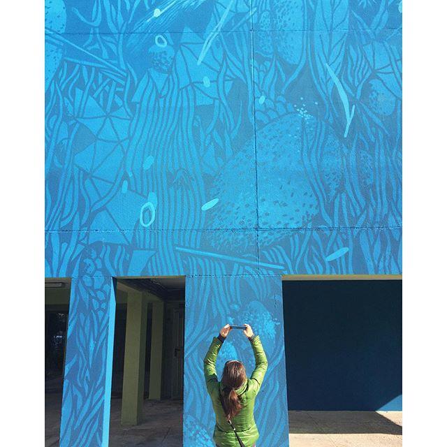 • con il naso all'insù ~ una piacevole mattinata in giro per #Cagliari w/ @myadventuresacrosstheworld. Ecco Claudia davanti all'ultimo lavoro di @tellas222 • #tv_livingnm2 #rsa_doorsandwindows #rsa_minimal #italymagazine #streetartsp #streetartistry #streetartphoto #streetartlovers #streetartutopia #streetartproject #streetartproject #streetart_official #streetarteverywhere #streetartCagliari #folk_italy #Livefolk #PostitforAesthetic #SeetoShare #AGameOfTones #Click_Italy #Tv_living