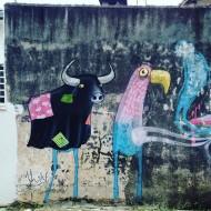 Compartilhado por: @samba.do.graffiti em Dec 21, 2015 @ 19:27
