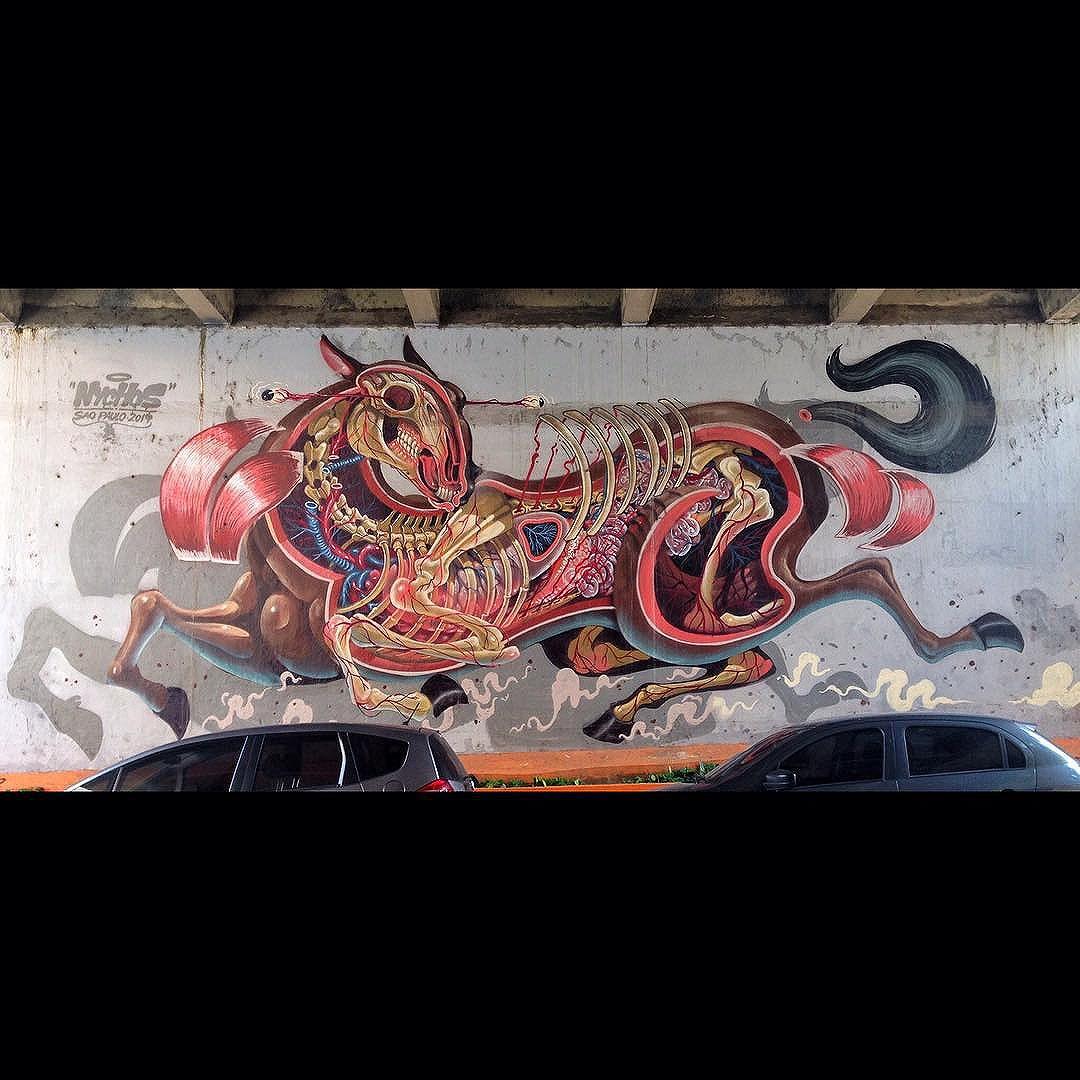 Amazing work by @nychos on #JoaquimAntunes street, in #saopaulo  Trabalho de #nychos na rua Joaquim Antunes, em #Pinheiros  #sp011 #spgraffiti #streetart #streetartsp #urbanart #artederua #arteurbana #grafite #graffiti