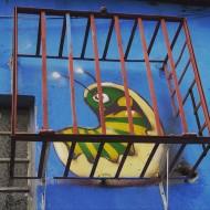 Compartilhado por: @samba.do.graffiti em Dec 05, 2015 @ 14:53