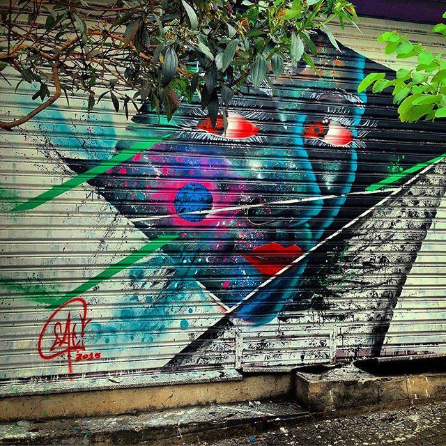 #streetart #urbanart #graffiti #artederua #arteurbana #streetarteverywhere #streetart_daily #rsa_graffiti #spray #spraypaint #streetartandgraffiti #graffitiporn #instagrafite #sampagraffiti #coolsampa #sampa #sampalovers #saopaulo #sp #011 #misturaurbana #brstreet #nasruasdesaopaulo #streetphotography #streetartsp